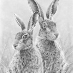 Hares Keeping watch By Nolon Stacey @ The Smithy Gallery Kettlewell