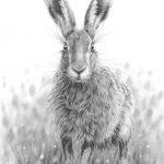 Hare Poised